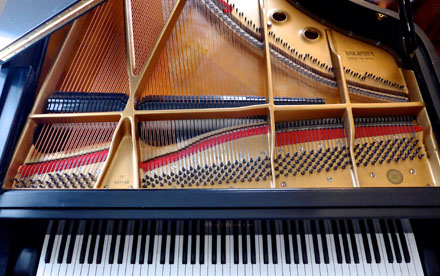 Photo of seven-foot piano in Wausau WI transformed by premium Cadenza hammers on WNG carbon-fiber shanks, Profundo bass strings and WAPIN bridge.